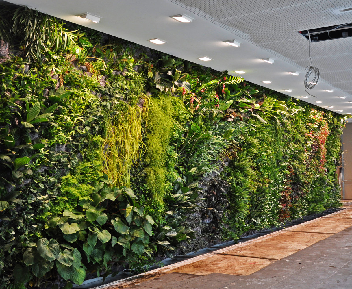 vertical-gardens (5)