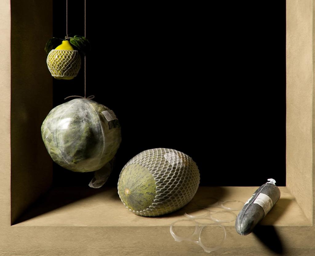 пластик, пластиковая упаковка, арт проект с упаковкой, Not Longer Life