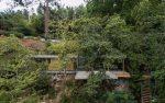 Ernesto Pereira, дом в зелени, дом, стеклянные стены